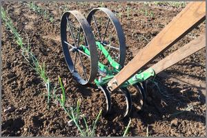 Hoss double wheel cultivator in use