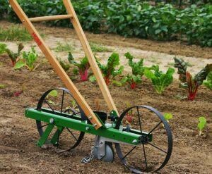 walk-behind garden seeder for planting corn