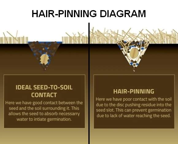 Seed hair-pinning is when plant residue prevents good soil to seed contact