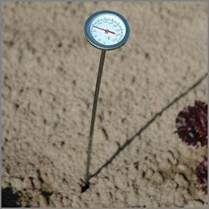 thermometer for checking soil temperature