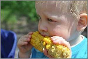 toddler enjoying sweet corn