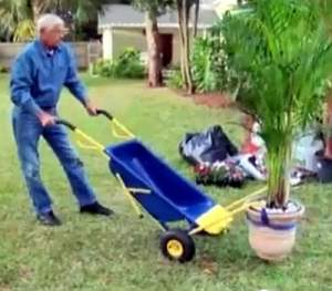 wheelbarrow-cart moving a large potted plant