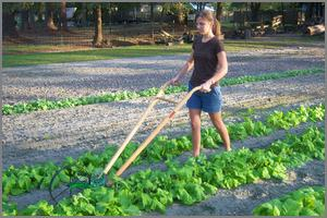 Woman pushing a garden cultivator